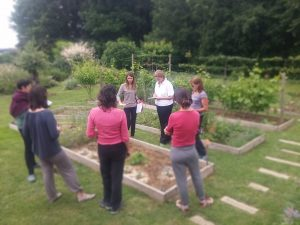 cours-potager-bio-toulouse